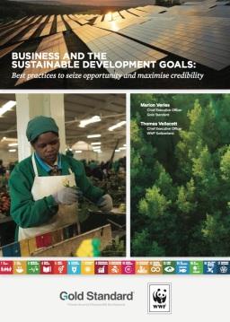 Business &SDGs.jpg