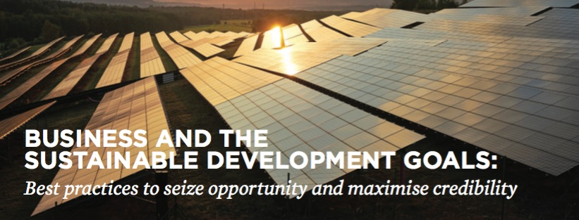 WWF and Gold Standard co-publish new report on 'Business and the SDGs'
