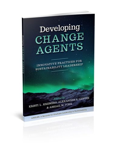 DevelopingChangeAgents-3D-copy-min-768x1011